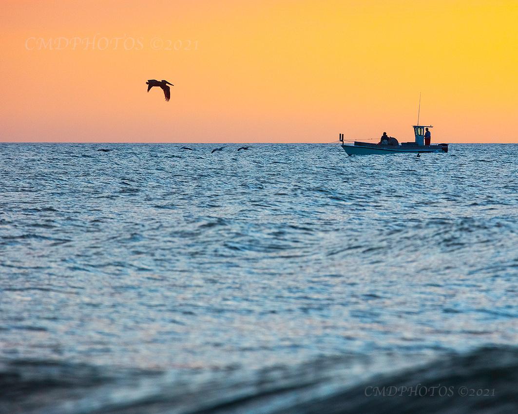 Dawn Sea Duties