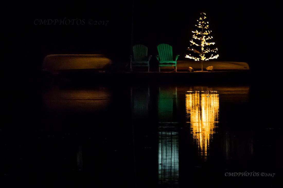 Christmas Park Lake View