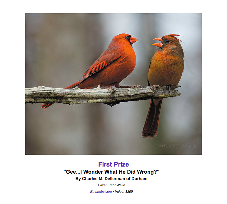 """1st Place prize in the """"2018 Carolina Woman's Magazine Annual Photo Competition!"""