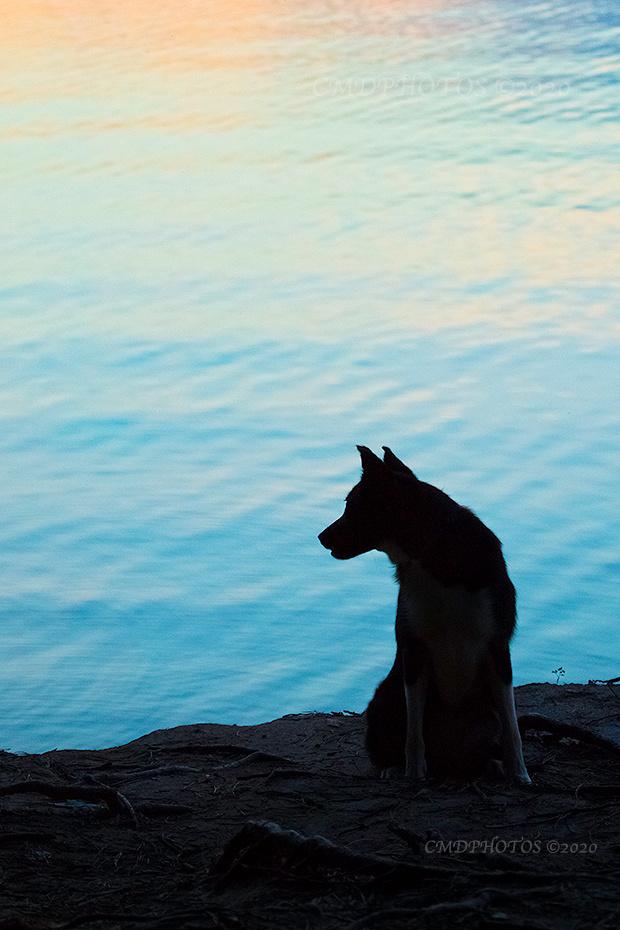 Jordan Lake Silhouette