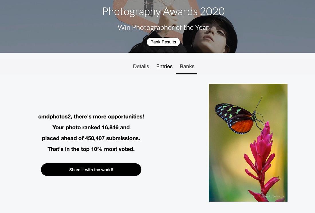 Top 10% Photograph International Award